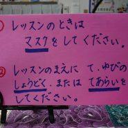 DSC_0100_copy_1008x756_copy_756x567_2.JPG